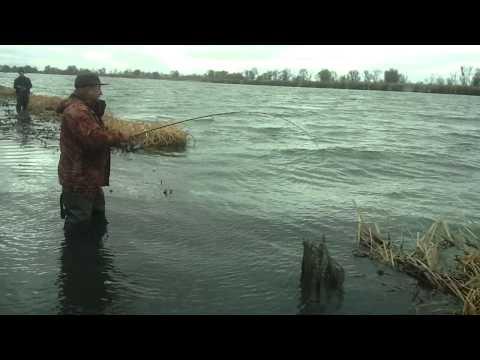 где ловят рыбу в невинномысске