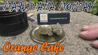 Orange Cake Marijuana Monday MONTREAL EDITION by Urban Grower
