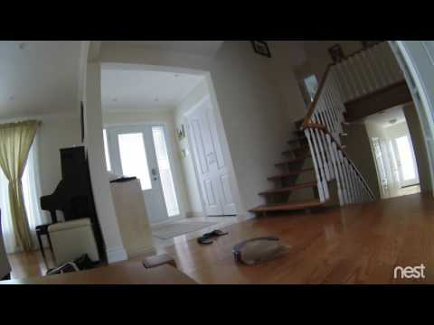 Roomba Commits Suicide