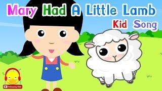 เพลงเด็กภาษาอังกฤษ Mary had a little lamb (แมรี่มีลูกแกะน้อย)