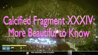Calcified Fragment XXXIV, Destiny full download video download mp3 download music download