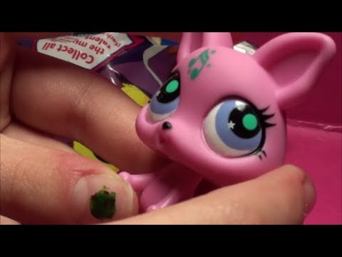 "Littlest Pet Shop PINK CHIHUAHUA DOG LIVE OPENING of ""Musically Talented"" BlindBag"