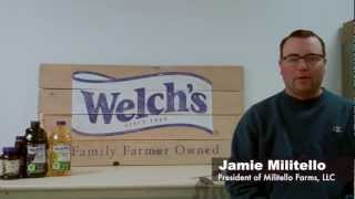 Video tour of a Welch's Concord Grape farm