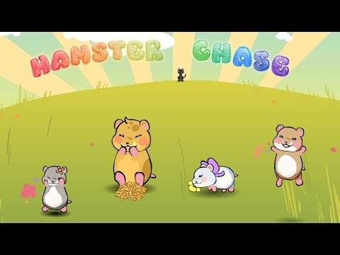 Video of Hamster Chase