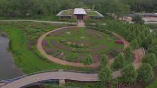 A bird's-eye view of the Green Roof Garden