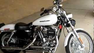 10. 2004 Harley-davidson Sportster, pearls white, 1200 custom, for sale, D&D Exhaust