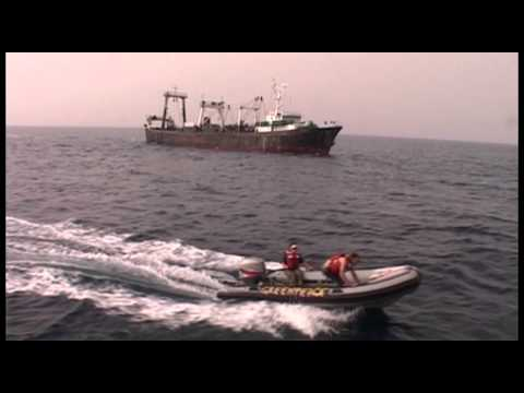 pirate fishing 2 - Illegal fishing operations - also known as