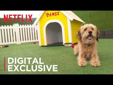 Benji  | Los Angeles Premiere | Netflix