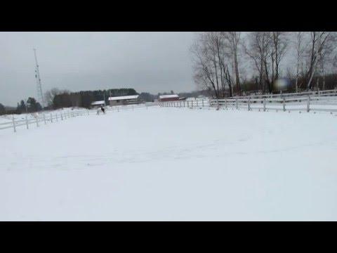 Siroco & Jen bridleless ride n the snow :)
