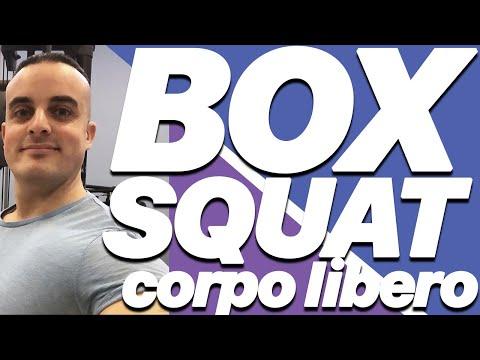 Esercizi Gambe: Box Squat