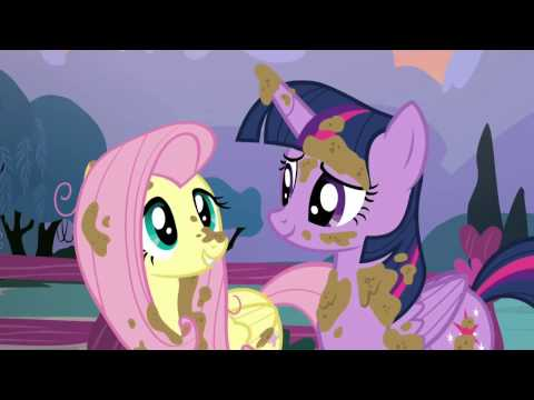 Twilight Sparkle helping Fluttershy clean her animals