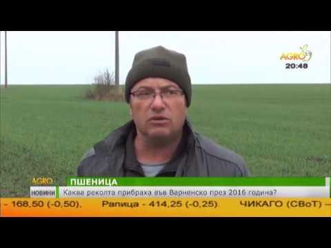 Централна емисия новини на Агро ТВ- 12.01.2017 г. - DomaVideo.Ru