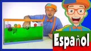 Blippi Español Hundír o Flotar | Experimentos Científicos Divertidos para Niños