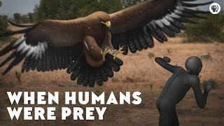 Video When Humans Were Prey MP3, 3GP, MP4, WEBM, AVI, FLV Januari 2019