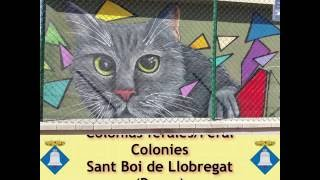 Sant Boi del Llobregat Spain  city photos : JFE 2016 - Colonias ferales en Sant Boi del Llobregat