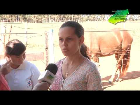 Equoterapia em Hidrolândia- Goiás no Campo- Tv Goiânia Band