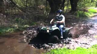 1. Yamaha Big Bear 250 2WD in action