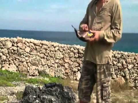 Kit de fixation rapide pour hamac