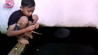 Video Mancing Perkoro MP3, 3GP, MP4, WEBM, AVI, FLV Juli 2018