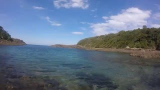 Shellharbour Australia  City new picture : Snorkeling in Shellharbour, NSW Australia