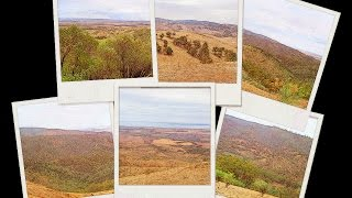 Wirrabara Australia  city photos : Flinders Ranges and Outback SA |Wirrabara Forest 2015|Country Driving