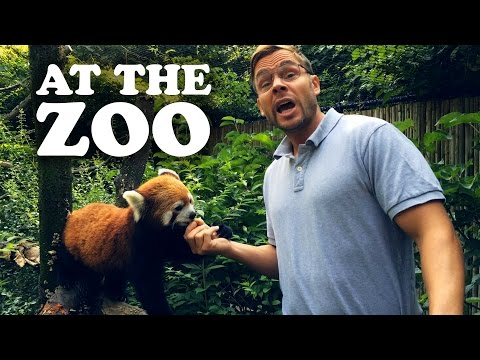 pittsburgh - Dad takes the family to the Pittsburgh Zoo & PPG Aquarium! Like Pittsburgh Dad on Facebook: http://www.facebook.com/pittsburghdad Follow Pittsburgh Dad on Tw...
