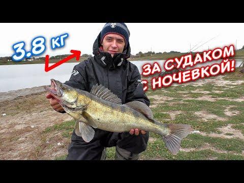 Рыбалка на СУДАКА с ночевкой  | Рыбалка осень 2017