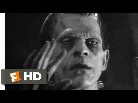 Frankenstein (5/8) Movie CLIP - The Monster Subdued (1931) HD