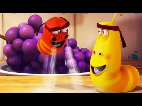 LARVA - LEVITATION | Cartoon Movie | Cartoons For Children | Larva Cartoon | LARVA Official