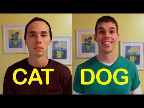 Cats and Dogs - If your friends acted like your pets, you might not keep them around. We made a sequel! Check out Part 2 - http://www.youtube.com/watch?v=4fsSAPyHxJI http://...