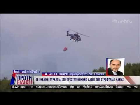 Ο περιφερειάρχης Δυτ. Ελλάδας μιλά για την πυρκαγιά στο δάσος της Στροφιλιάς | 03/04/19 | ΕΡΤ