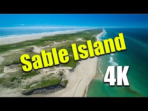 Se você vier a Ilha de Sable, talvez nao queira ir embora