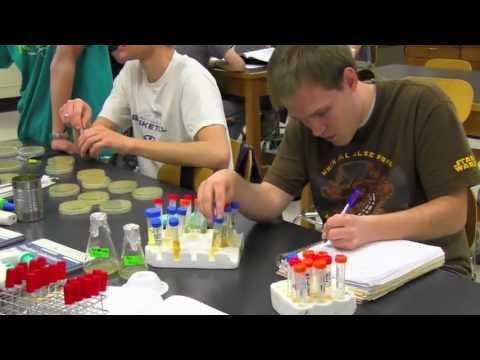 mmbio-BYU Phage Hunters