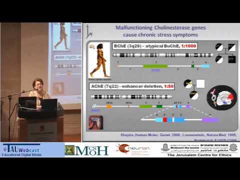 Neuroethik der Hirnforschung