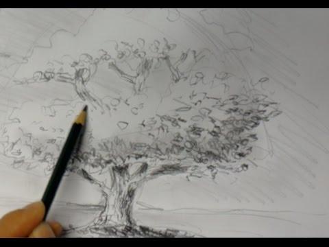 ganz einfach zeichnen lernen 2: Baum