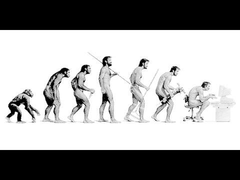 la teoria dell'evoluzione è una frode?