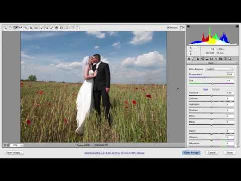 Using the Tools in Adobe Camera RAW