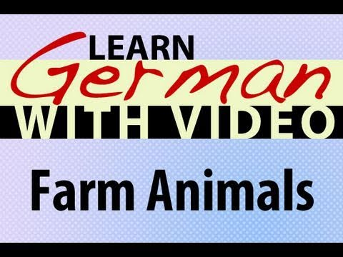 Learn German with Video – Farm Animals
