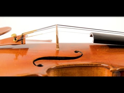Video - Ascenté Violin D String | A313D