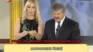 Maydanoz Sapı Faydaları Maydanozun Yararları Ahmet Maranki
