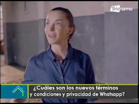 Cuáles son los nuevos términos y condiciones y privacidad de Whatsapp