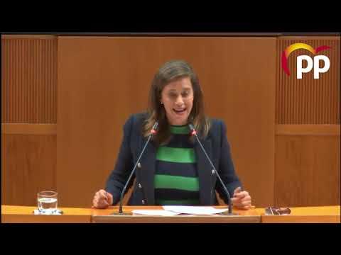 Orós alerta de la ausencia de proyectos sociales en los fondos de recuperación que prepara el Gobierno aragonés
