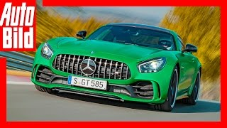 Video: Mercedes-AMG GT R (2016) - AMG Topmodell mit 585 PS by Auto Bild