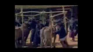 Video PAK SAKERAH 1982 FULL MOVIE MP3, 3GP, MP4, WEBM, AVI, FLV Juli 2018