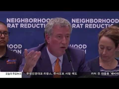 뉴욕시 '쥐와의 전쟁 선포' 7.13.17 KBS America News