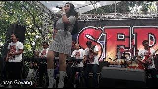 SERA - Jaran Goyang LIVE Maospati