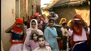 Alwar India  city images : Child marriage or Bal Vivaha in Alwar, India!