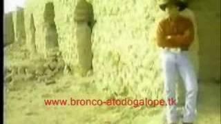 Naila Bronco