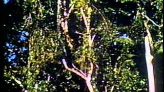 Documentário Heitor Villa-Lobos - REDE MANCHETE