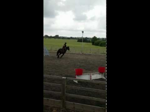 Trick riding  (AKA sj training wiv no stirrups)